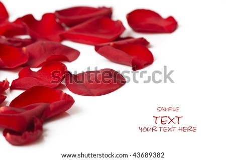 Day Valentine rose petals as background