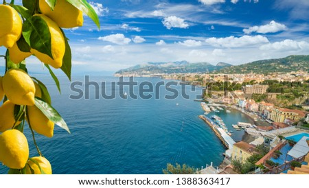 Daylight aerial view of cliff coastline Sorrento and Gulf of Naples in Southern Italy. Ripe yellow lemons in foreground. In Sorrento lemons are used in production of limoncello.