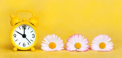 Daylight savings time banner, daisy flowers and clock watch on yellow background. Spring forward, springtime or summer concept.