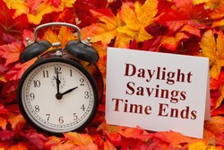 Daylight Savings Time Ends, Some fall leaves, black and white alarm clock and a blank greeting card with copy-space