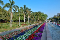 Daylighting view of beautiful multicolour flowers with fountain of Talkatora garden,New Delhi,India