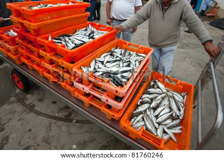 days catch of sardins in orange crate sitting on a dock which was caught in Portugal