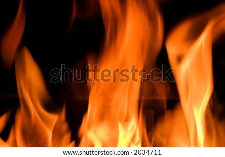 De brand toont zijn schoonheid om een goede warme vakantievriend tezijn - stock photo