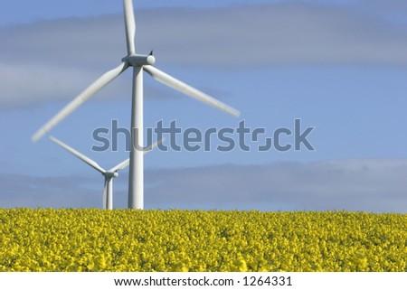 De Turbines van de wind en gebied - stock photo