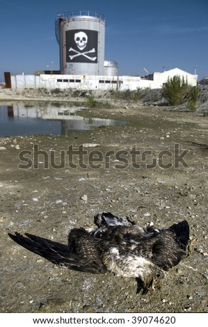 Dead bird next to a chemical plant.Concept of life danger.