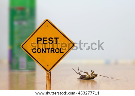 dead cockroach on floor with...