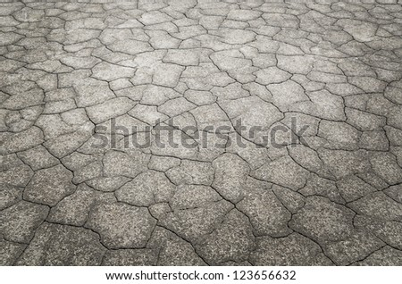 Dead desert with detail of cracked earth