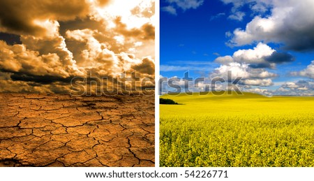 Dead earth and healthy nature - stock photo