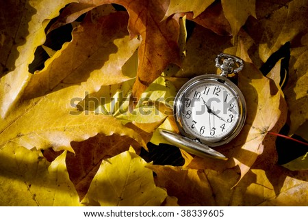 dead leaves and pocket watch