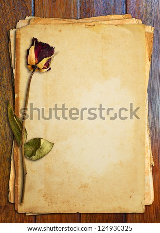 Dead roses put on old paper.