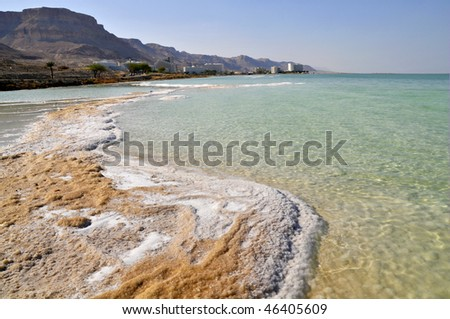 Dead Sea and coastline with hotels