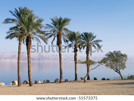 Dead Sea, photo was taken in Israel