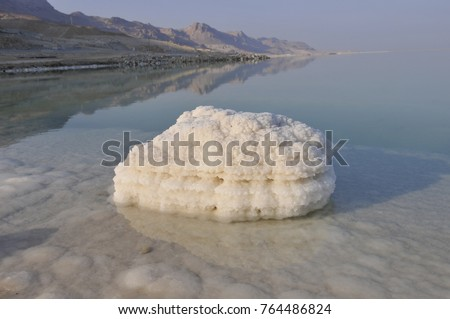 Dead Sea salt, island of salt close-up on the shore of the Dead Sea, Israel #764486824