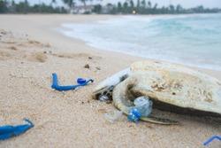 Dead sea turtle among plastic garbage on the beach sand