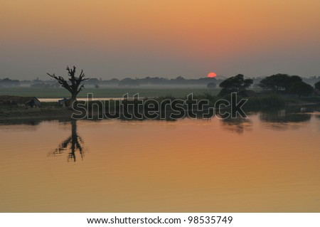 Dead tree silhouette at sunset and reflection in water  ,Mandalay, Myanmar