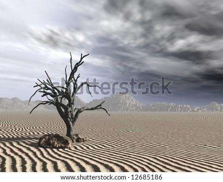 Dead tree with dreary gray sky on desert sand.