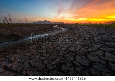 Dead trees on drought and cracked land at dry rivers or lakes, climate change, metaphor, global warming and water crisis in Thailand
