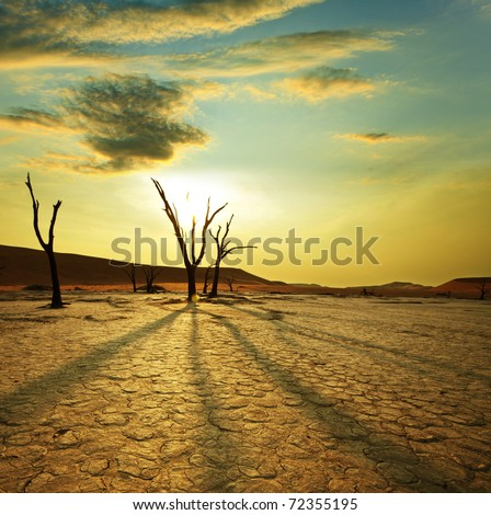 stock photo : Dead valley in Namibia