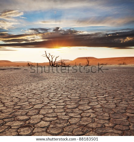 Dead valley in Namibia