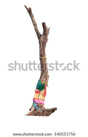 Dead wood tied with colorful cloths as villagers' faith