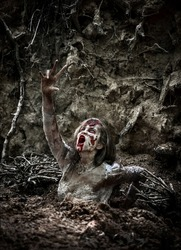 Dead Zombie Rising from the Burial Gound