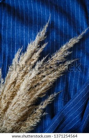 deadwood on a blue denim shirt