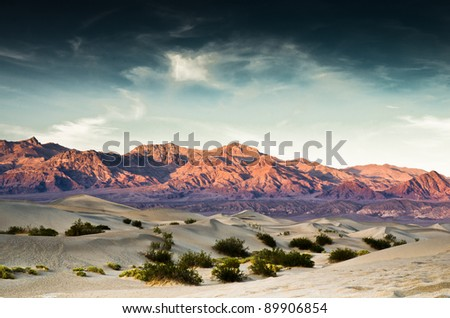 Death Valley sand dunes with bushes and mountains in the background.