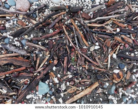 Debris of tree branches after storm on sandy beach as background or texture. Discards on beach - abstract background. Florida beach Debris. Pile of wood branches debris, pebbles or gravel background. #1010910145