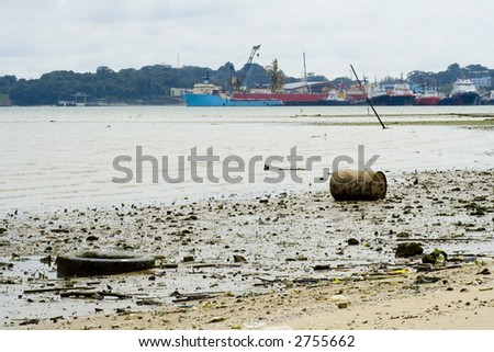 Debris on a polluted beach at low tide