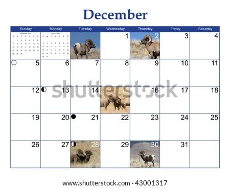 stock photo   december 2010