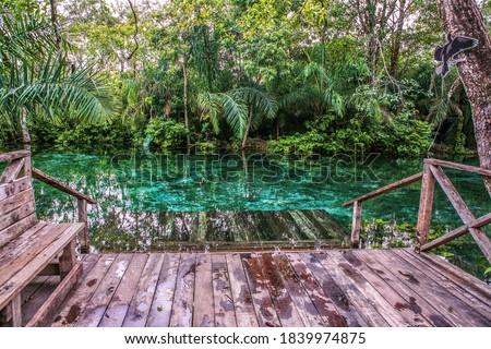 Photo of  Deck view in Nascente Azul, Sucuri River in city of Bonito, Mato Grosso do Sul - Brazil