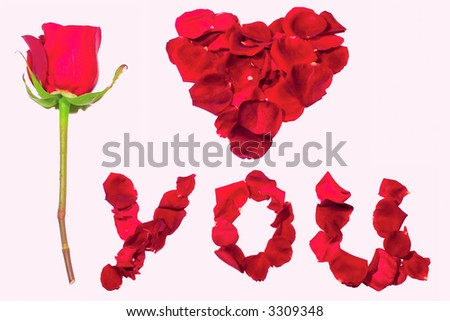 declaration of love with rose petals isolated on white