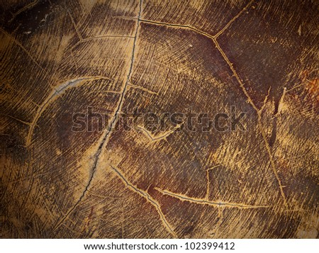 Decorate wood texture background
