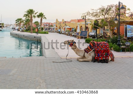 Decorated camel lying on the background of the sea and promenade in marina #410463868