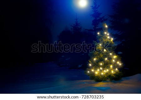 Decorated christmas tree outdoor with christmas lights with moon.