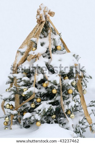 decorated christmas tree outdoors