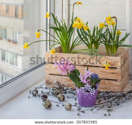 Decorated Easter eggs blooming daffodils in balcony boxes for flowers