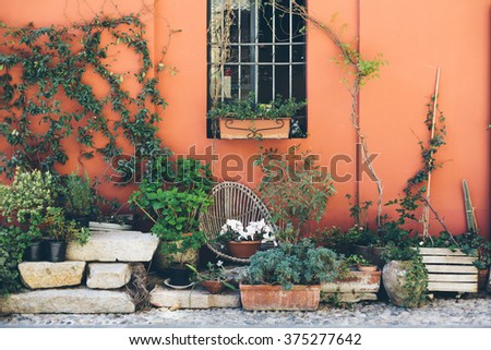 Decorated flower patio in summer #375277642