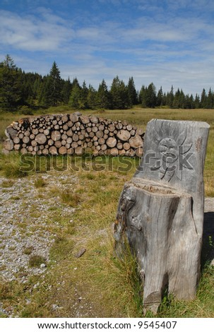 Decorated Tree trunk near a wood stack on Italian Alps #9545407