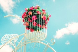 Decoration artificial flower in basket on bicycle