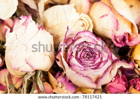 Decoration  made of dried rose flowers - stock photo