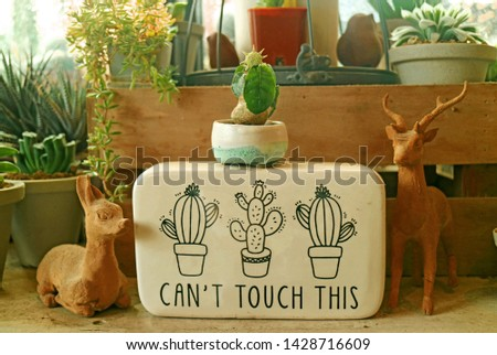 Decoration of an indoor gardening space with a lovely notice board