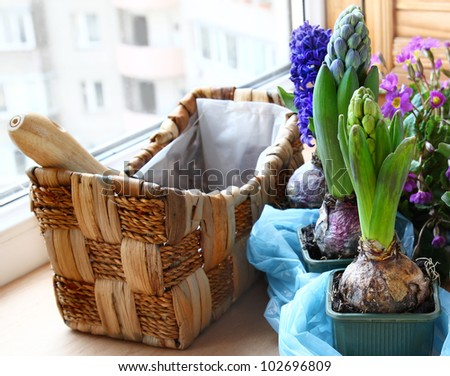 Decoration of balcony spring flowers on a balcony - stock photo