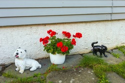 Decoration of the courtyard of the house, figures of a white fluffy dog and a smooth black cat, near a pot of red flowers.