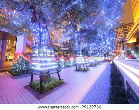 Decoration on trees at night