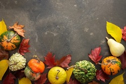 Decorative and edible pumpkin with fallen leaves of elm and maple on a green background, top view, autumn background, copy space