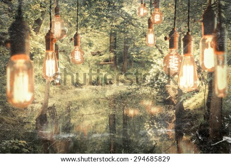 Decorative antique edison style filament light bulbs hanging in the woods