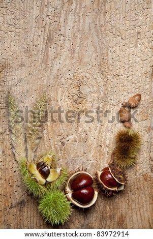 Decorative autumn border with chestnuts, and leaves