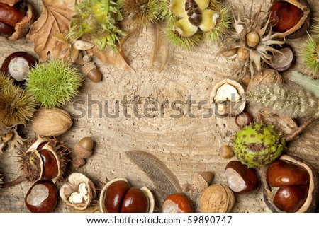 Decorative autumn border with chestnuts, walnuts, hazelnuts, acorns and leaves