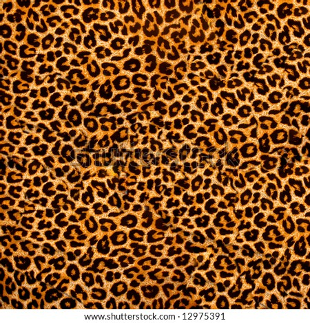 Leopard Background on Decorative Background   Leopard Skin Stock Photo 12975391